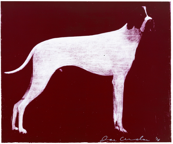 Large Dog, Burgundy