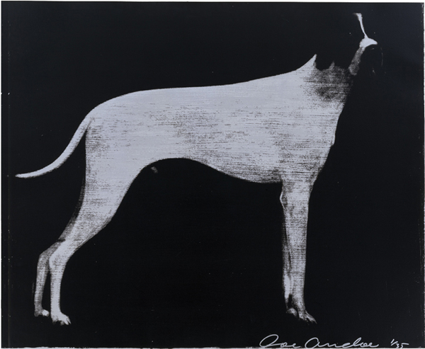 Large Dog, Graphite on Silver