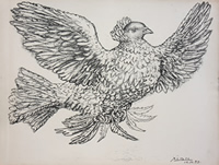 Colombe Volant - Flying Dove