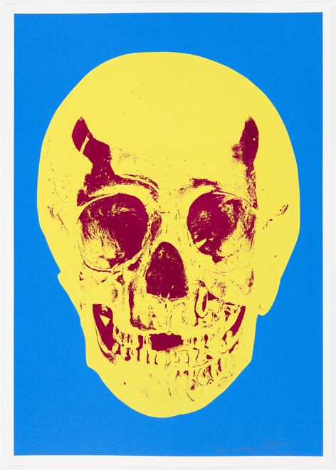 Cerulean Blue Pigment Yellow Royal Red Pop Up Skull