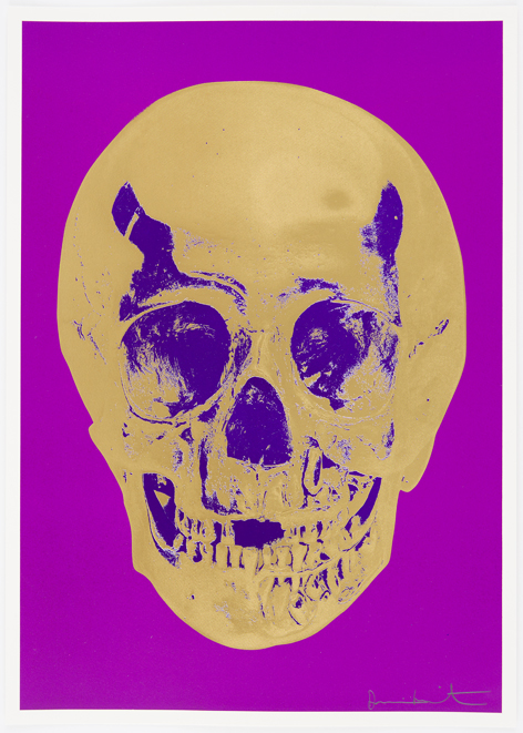 Long Life Purple African Gold Imperial Purple Skull