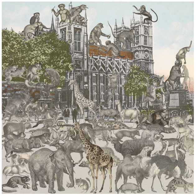 London- Westminster Abbey- Animalia