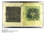 Untitled (Target, Fern, Mixed Media on Plexi) - click to enlarge