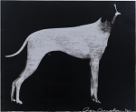 Large Dog (Graphite on Silver) - click to enlarge