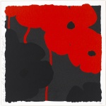 Poppies, Red and Black  - click to enlarge