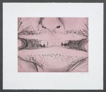 Soft Ground Etching - Rose - click to enlarge