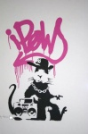 Gangsta Rat Pink - click to enlarge