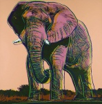 Endangered Species: African Elephant, F & S II.293 - click to enlarge