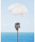 Brain/Cloud (With Seascape and Palm Tree) - click to enlarge