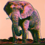 African Elephant - click to enlarge