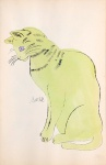 Sam. [Sitting lime green cat with purple eyes.] - click to enlarge
