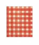 Warm Red Gingham - click to enlarge