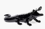 Born Wild Crocodile (Black) - click to enlarge