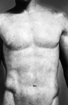 Torso (from Chiaroscuro) - click to enlarge
